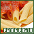 Pasta: Penne